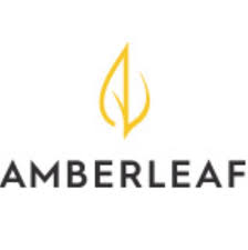 Investment Piece: Where to Shop Amberleaf
